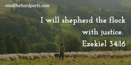 Ezekiel 34.16 shepherd